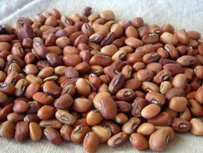 Iron and Clay Southern Pea (Cowpea) 454g