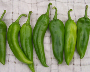 Anaheim Chile PEPPER, HOT 3 g