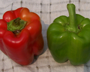 Keystone Resistant Giant Sweet Bell Pepper 0.3 g